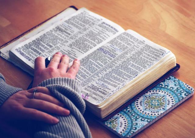 辞書を引いて勉強をする